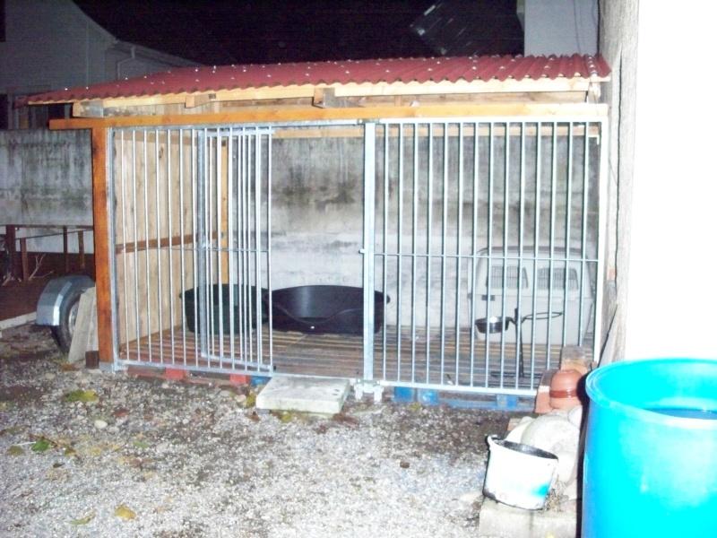 Forum du chien de berger allemand fabrication d 39 un chenil ou d 39 un box - Forum faire construire ...
