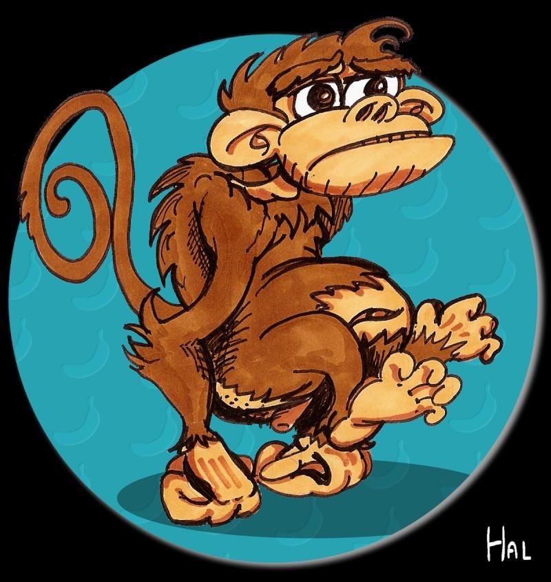 http://i75.servimg.com/u/f75/11/75/94/96/monkey16.jpg