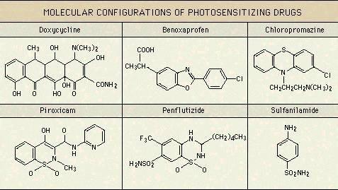 http://i75.servimg.com/u/f75/12/75/14/83/molecu10.jpg