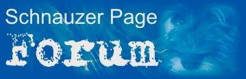 Schnauzer Page Forum