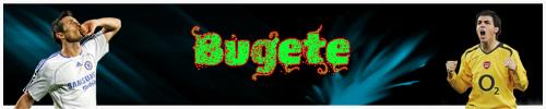 -- Bugete --
