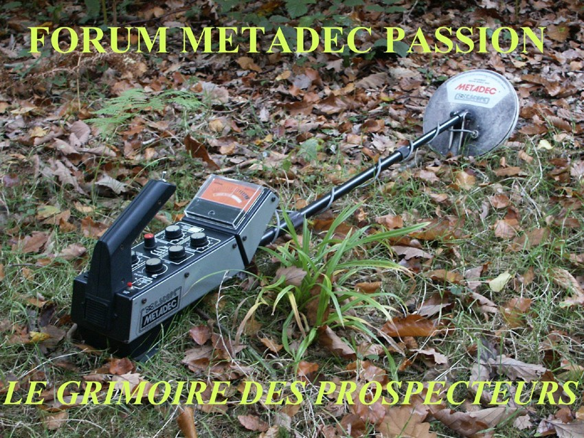 METADEC PASSION -  PROSPECTIONS