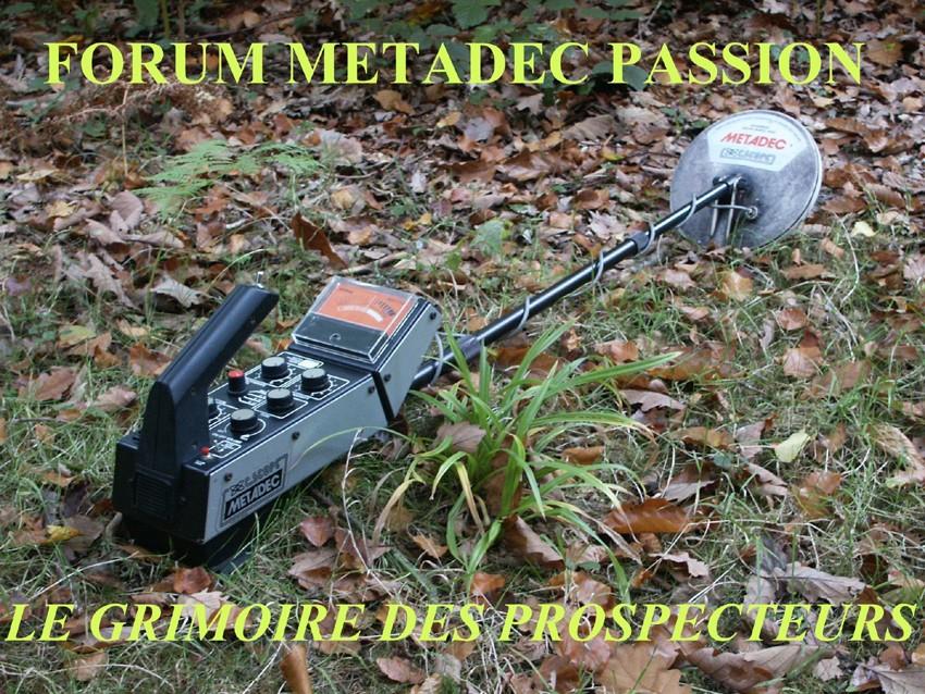 METADEC PASSION -  PROSPECTIONS