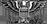 Miembro Honorario Elite ¦Coronel¦