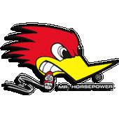 Mr. Horsepower !