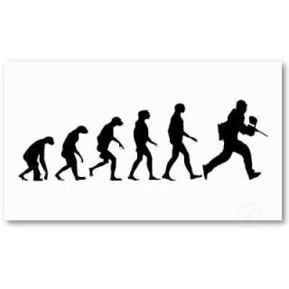 evolut12.jpg