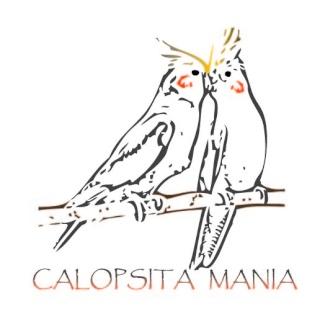 Calopsita Mania
